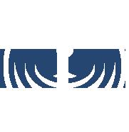Practically Mindful Logo